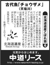 北海道遺産 こぼれ話 6 古代魚「チョウザメ」