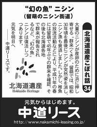 """北海道遺産 こぼれ話 34 """"幻の魚""""ニシン"""