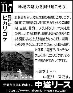 北海道 地域の魅力117 ヒカリゴケ