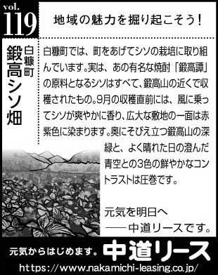 北海道 地域の魅力119 鍛高シソ畑